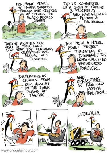 black-necked-crane-copy-copy (1)